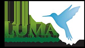 Mino logo2
